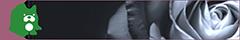 月乃宮 千晶 Ameba